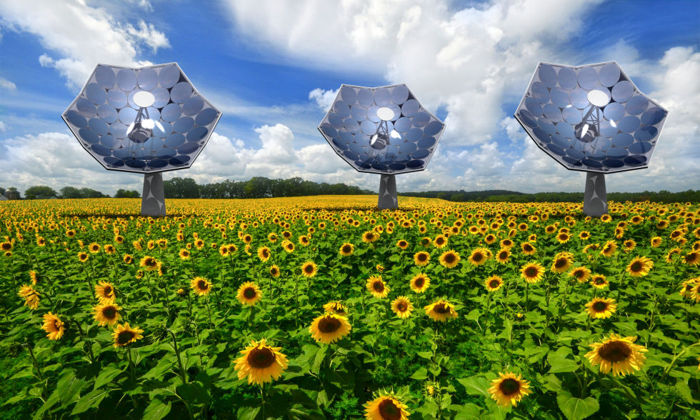 What a completed Solar Sunflower installation might look like in the future. Maybe. (This is a computer render.)